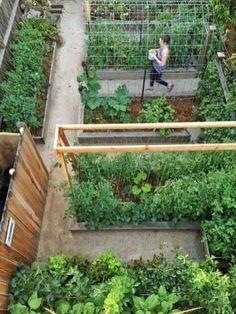 37 awesome backyard vegetable garden design ideas