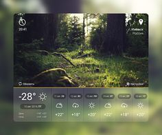 Weather (tablet)