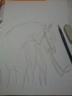 WiP .....für ein Pferdebild ....DIN A4 Größe als Bleistiftzeichnung   ©2012 by Anca Flowbi