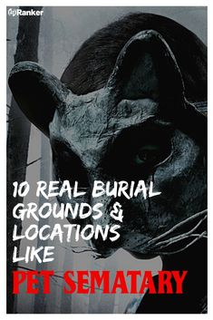 Real Burial Grounds And Locations That Could Have Inspired 'Pet Sematary' Scary Movies, Horror Movies, Good Movies, Haunted Places, Abandoned Places, Land Of The Living, Steven King, Pet Cemetery, Good Anime Series