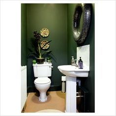 Dark Green bathroom, but needs a lot of light. White fixtures make the dark paint pop.