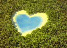 Love,Mother Earth