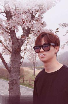 Árvore bonita... queria ser aquela flor. #JB