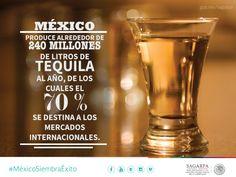 México produce alrededor de 240 millones de litros de tequila al año, de los cuales el 70% se destina a los mercados internacionales. SAGARPA SAGARPAMX #MéxicoSiembraÉxito