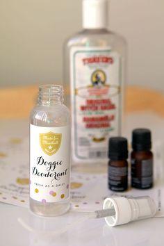 Stinky Dog Spray | Evermine Blog | www.evermine.com