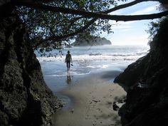 college cove, trinidad CA