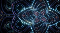 """""""Cosmic Flower Unfolding"""" is a mesmerizing short animation by Ben Ridgway featuring abstract mandala-like shapes transforming and morphing into one another."""