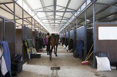 Monaghan Farm Stables & Equestrian Facilities. Monaghan Farm, Lanseria, Johannesburg. Photographs courtesy of Paper Cut Photography (papercutphotography.com)