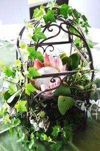 flowers flowers ...