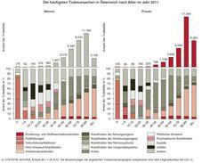 statistik austria / georg  todesursachen