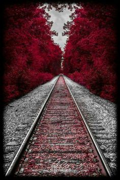 Autumn Train Tracks in New Hampshire Splash Photography, Amazing Photography, Nature Photography, Scenary Photography, Railroad Photography, Trains, Cool Pictures, Cool Photos, Scenery Pictures