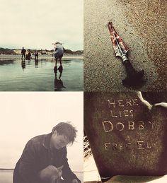 here lies dobby - photo #35