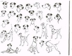 One Hundred an One Dalmatians - || CHARACTER DESIGN REFERENCES | Find more at https://www.facebook.com/CharacterDesignReferences if you're looking for: #line #art #character #design #model #sheet #illustration #best #concept #animation #drawing #archive #library #reference #anatomy #traditional #draw #development #artist #how #to #tutorial #conceptart #modelsheet #animal #animals #dog #wolf #fox #dogs