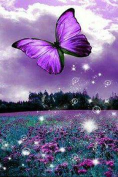 Purple wonders