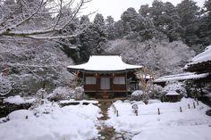 真っ白の雪に包まれた冬の寂光院の本堂