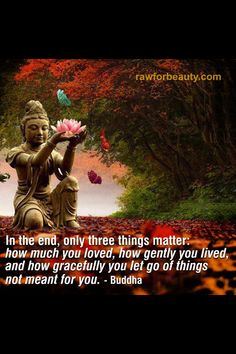 Raw for beauty Spiritual Wellness, Spiritual Path, Raw For Beauty, Learn To Meditate, Buddha Quote, Peace And Harmony, Deep Thoughts, Beautiful Words, Buddhism