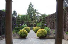 York Gate Garden   Perennial