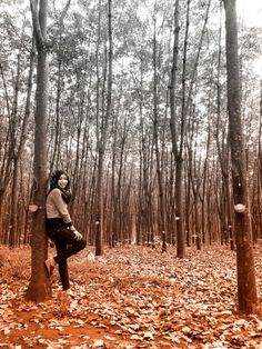 Hijab and the forest