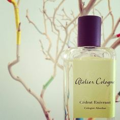 Cedrat Enivrant is summer in a bottle - notes of Moroccan cedrat, Mexican lime, Calabrian bergamot, mint, basil, juniper berries, tonka bean, vetiver, elemi. #ateliercologne #luckyscent #summer #scent #french #perfume #scentbar
