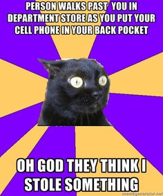 """EVERY TIME, SERIOUSLY NO LIE """"Person walks past you in department store as you put your cell phone in your back pocket (or purse). Oh God! They think I stole something #anxietycat"""