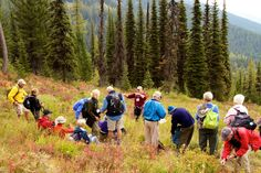 Hiking the Danny On Trail in Whitefish, Montana with @Road Scholar.