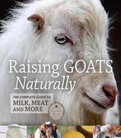 Raising Goats Naturally: The Complete Guide To Milk Meat And More PDF