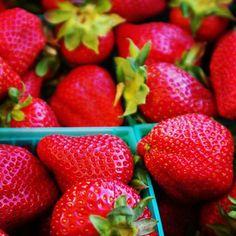 Farmers Market Strawberries 8x8 Photograph
