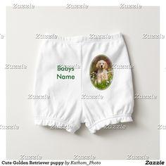 Cute Golden Retriever puppy Diaper Cover