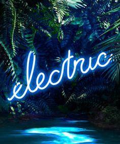 Disco in the Jungle: Electric Blue