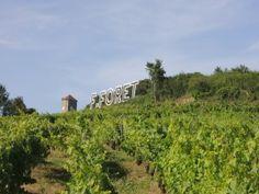 L'Art et le Vin en Arbois7 Totems Folliwood pour Flora Foret ! (coup de pouce) | 50A BLOG