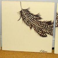 Biscuit feathers original
