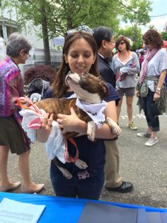 Sam, Veterinary Assistant at Ridgewood Veterinary Hospital, holding an adoptable puppy at Adopt-A-Pet Day.