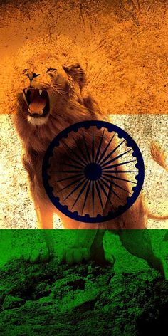 Beautiful Indian Flag Newest Wallpaper Collection Independence Day Wallpaper, Independence Day India, Independence Day Images, Indian Flag Wallpaper, Indian Army Wallpapers, New Wallpaper, Indian Flag Photos, Indian Flag Colors, Photo Background Images