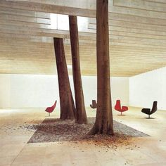 Trees in Interior Design | Yellowtrace.