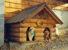 awesome dog houses - Google Search