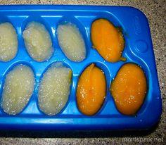 Homemade Baby Food Freeze Ice Tray momspark.net