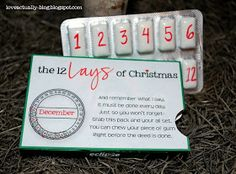 The 12 Lays of Christmas: I resolve to do this for 2014 christmas for my man! It fits my lover's corny personality! <3 it!