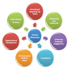 How Hiring Human Resource Consulting Services Can Help Hr Management, Resource Management, World Book Encyclopedia, Consulting Companies, Environmental Health, Life Cycles, Human Resources, Organizations, Leadership