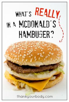 What's REALLY in a McDonald's hamburger? Ugh... I don't think I'll be eating there ever again.