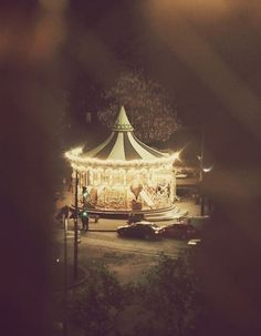 Carrousel at night. Dark Circus, Merry Go Round, Carousel Horses, Foto Art, Big Top, Vintage Circus, Lomography, Nocturne, Amusement Park