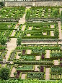 Veg garden // Villandry