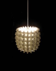 egg cartons lamp. For after Easter?