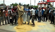Farmers dump their own rice to protest imports from India
