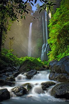 UNCOVERING BALI'S 8 MOST SPECTACULAR WATERFALLS UNKNOWN TO MOST