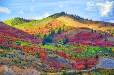 Palisades in the fall by Reasons to Love Idaho, via Flickr