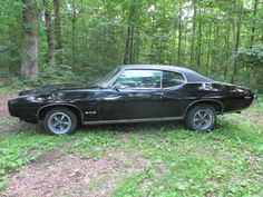 1969 muscle cars pictures | 1969 Pontiac GTO-1454543