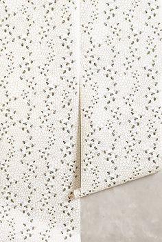 Bee Colony Wallpaper
