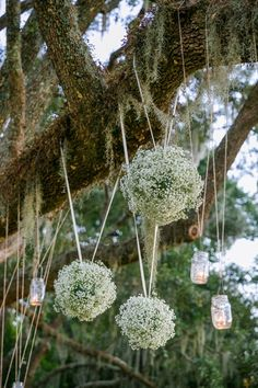 Baby's breath ceremony decor hanging from tree // Romantic Pink, Peach + Sea Green Wedding at Oak Point Plantation on the Stono in Charleston SC // Dana Cubbage Weddings // Charleston SC + Destination Wedding Photographer
