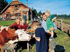 Im Wechselland lässt es sich wunderbar wandern. Austria, Life Is Beautiful, Paradise, Animals, Mountains, Alps, Summer, Hiking, Animales