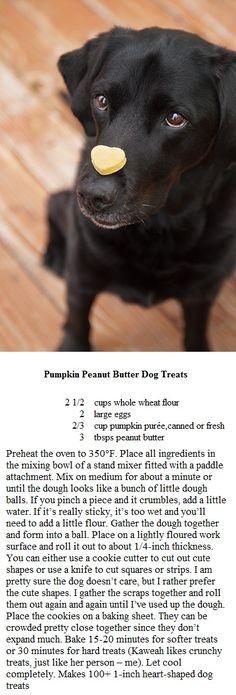 Pumkin Peanutbutter Dog Treats
